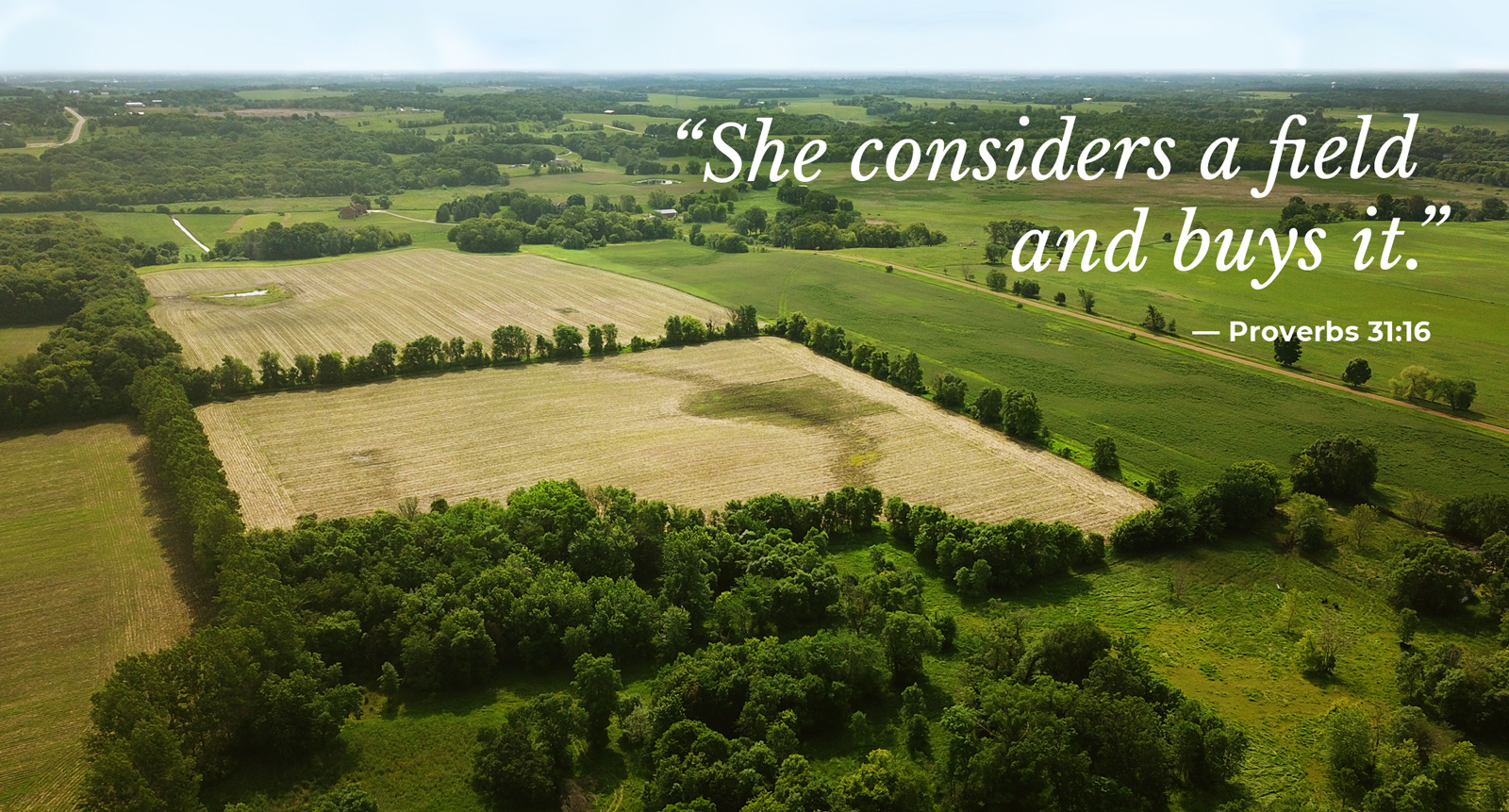 She Considers a Field and Buys It —  The Property Search Process