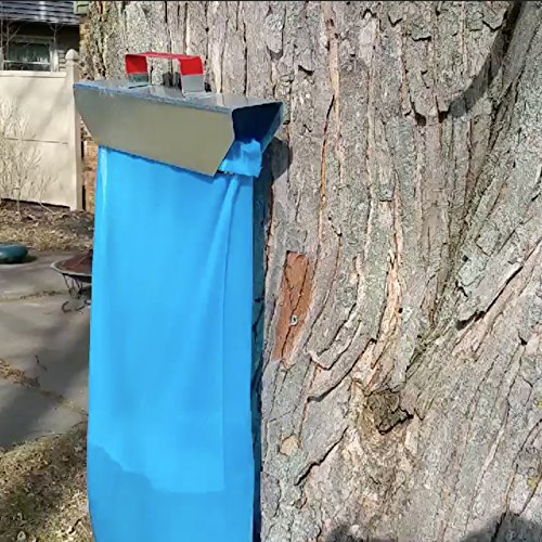 Maple syrup tapping with bag system