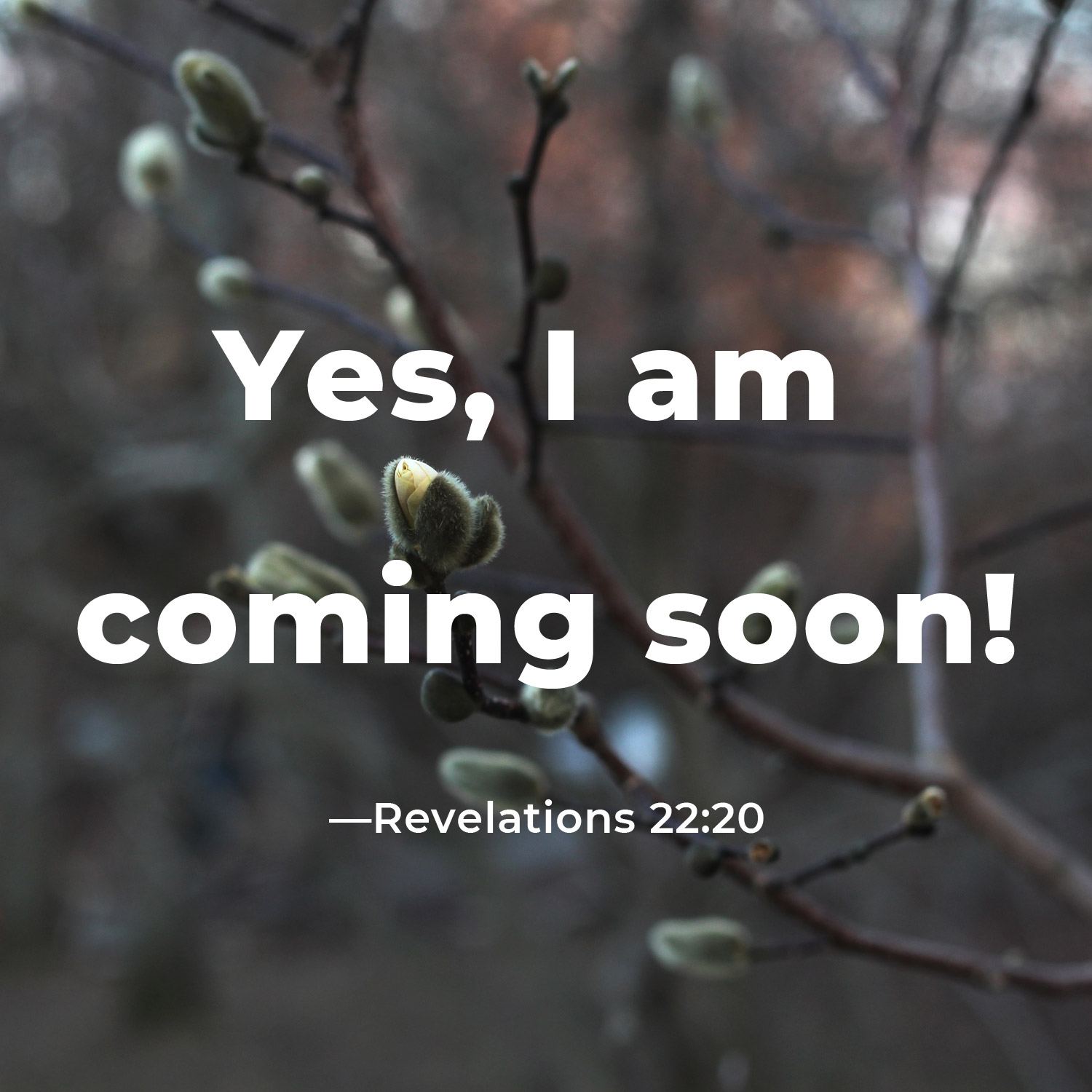 Yes, I am Coming Soon!