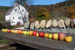 Finding the Best Heirloom Apples for the Small Home Orchard
