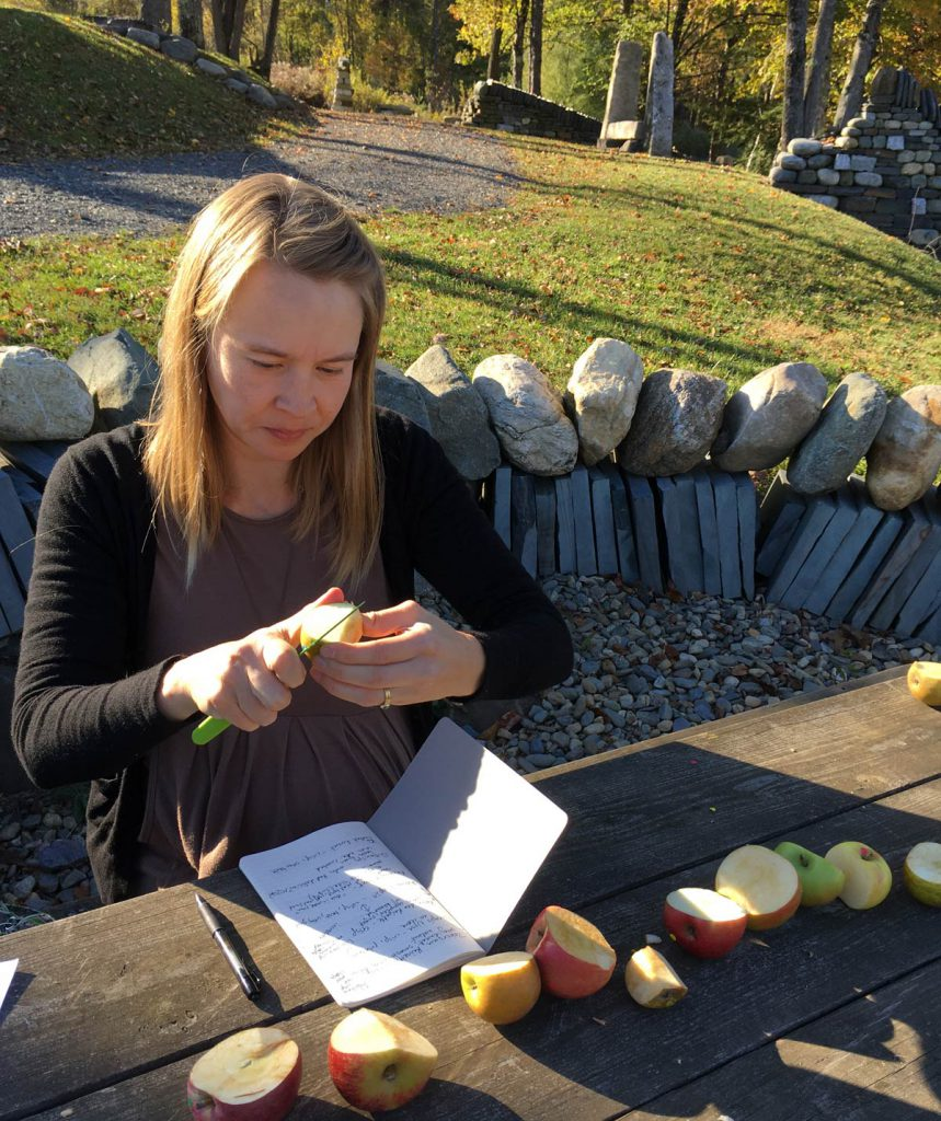 Heirloom apple taste testing