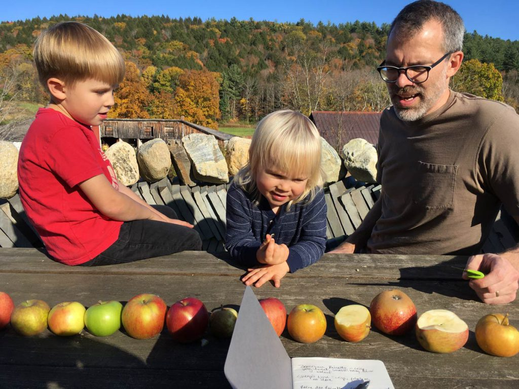 Heirloom apple taste testing panel